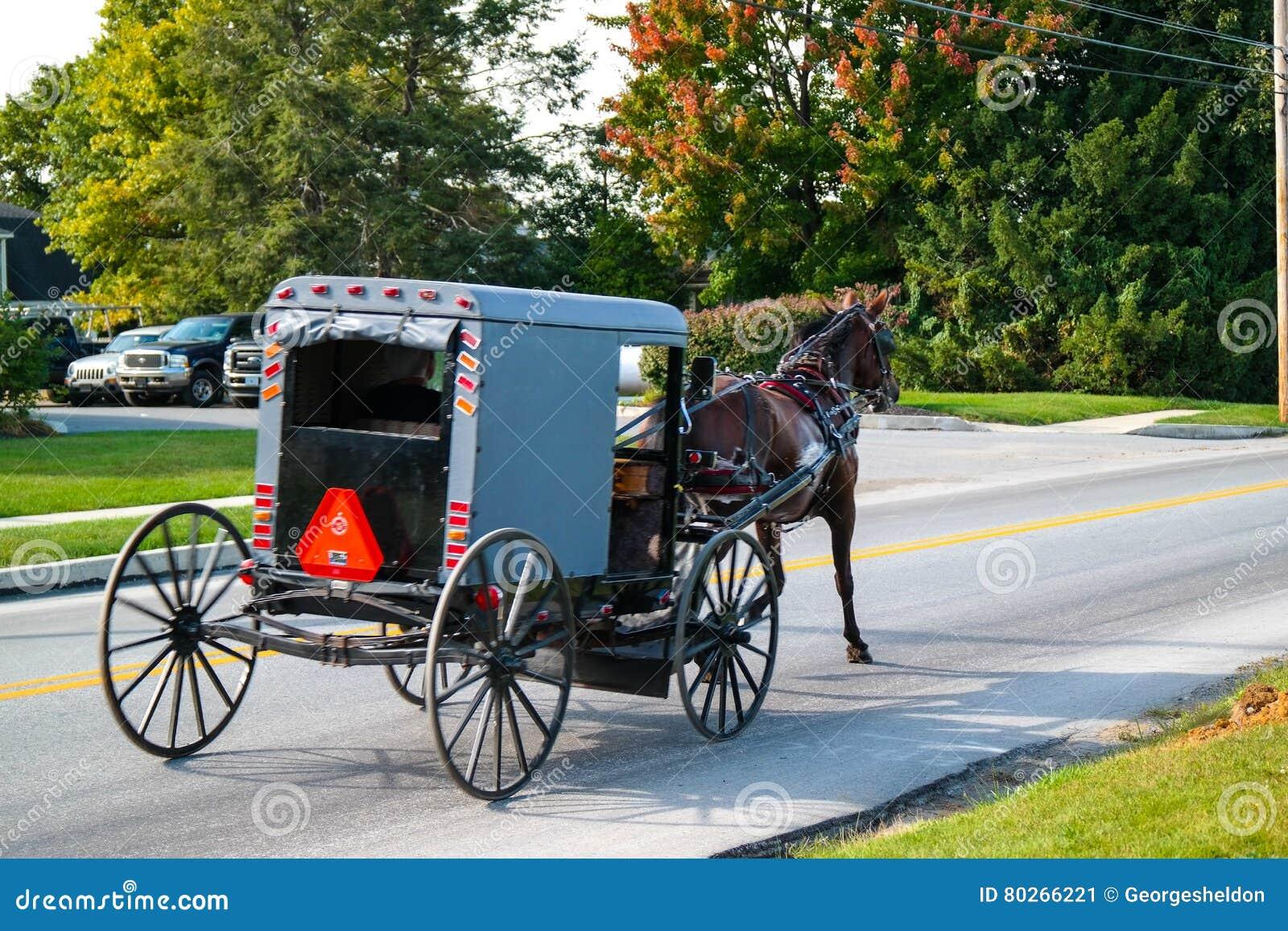 Pferd zieht Buggy in Lancaster County