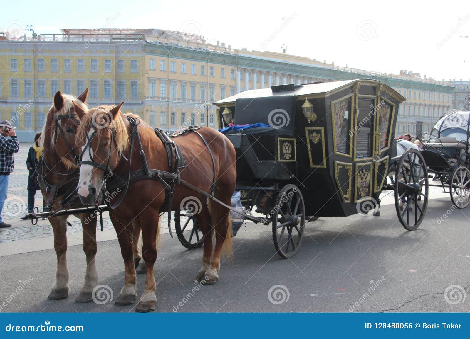 Pferde auf den Palast quadratischen Heiligen Petersburg Russland