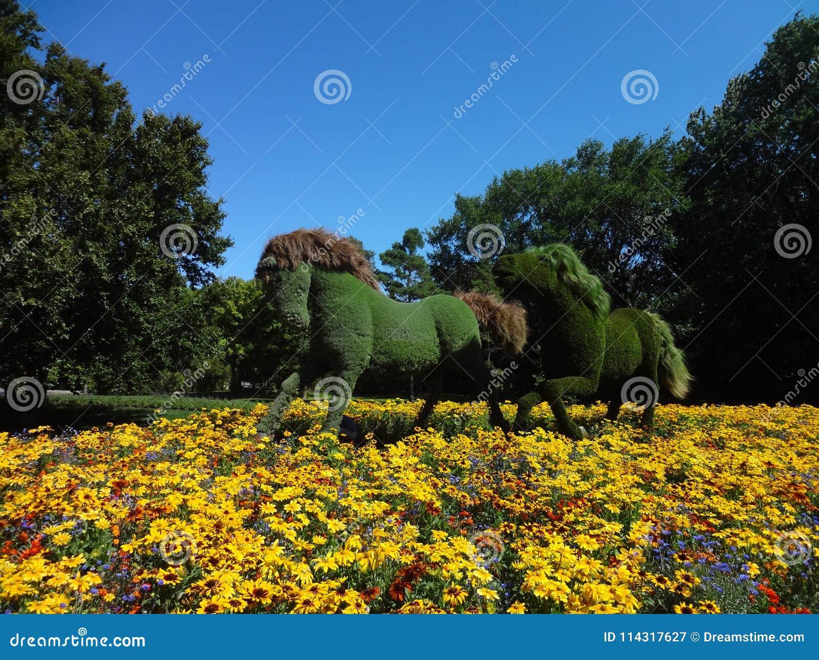 Pferde mit Betriebshaut Botanischer Garten von Montreal Kanada