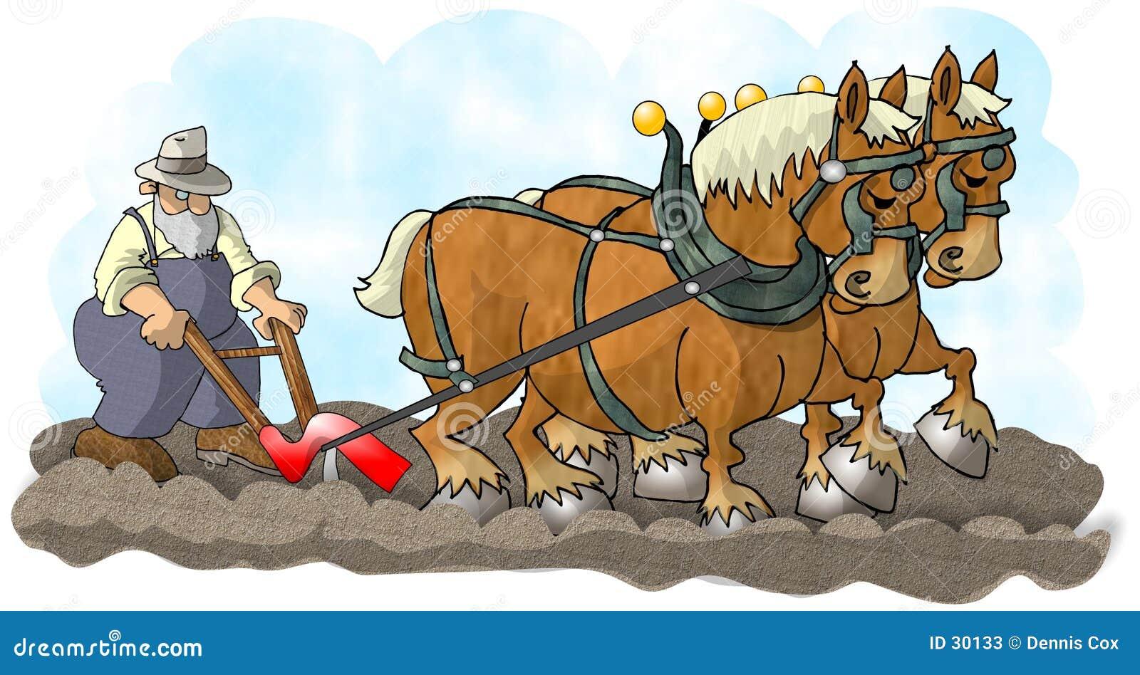 Pferde und Pflug