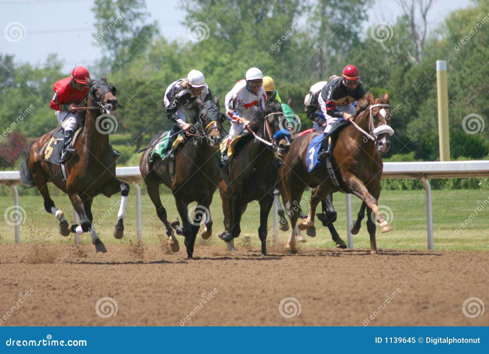 Pferden-Rennen