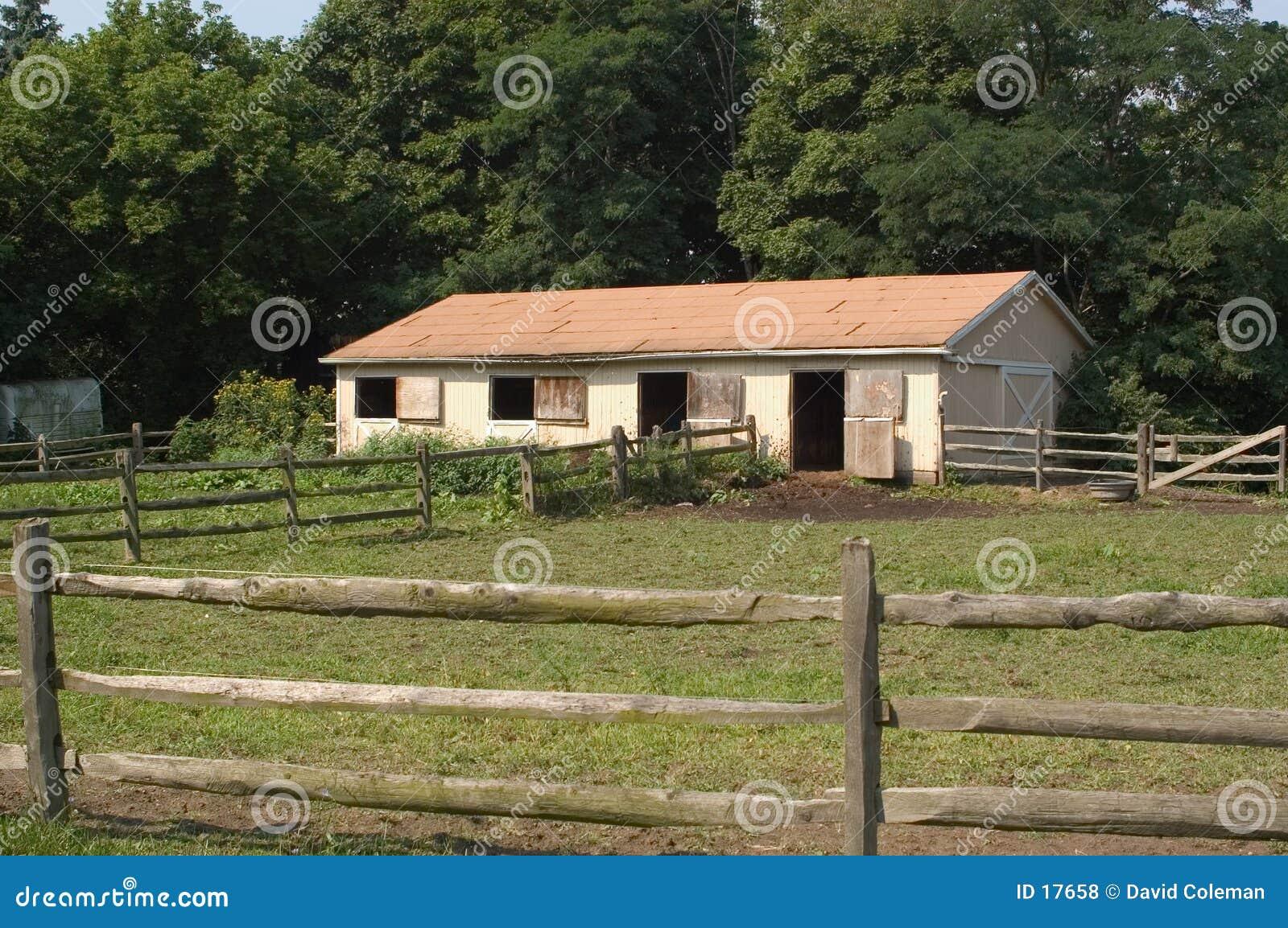 Pferden-Stall
