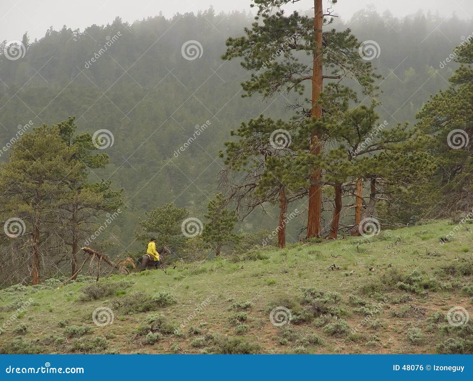 Pferderuecken-Mitfahrer in den Bergen