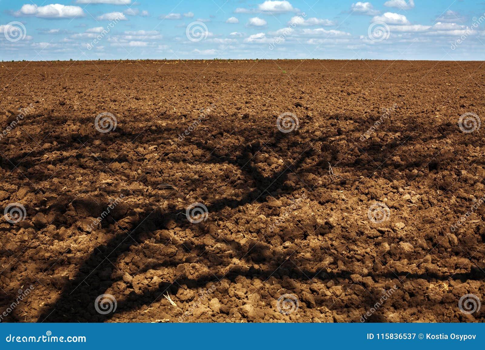 Pflügen des Feldes des Ackerlandes mit Schatten vom Baum