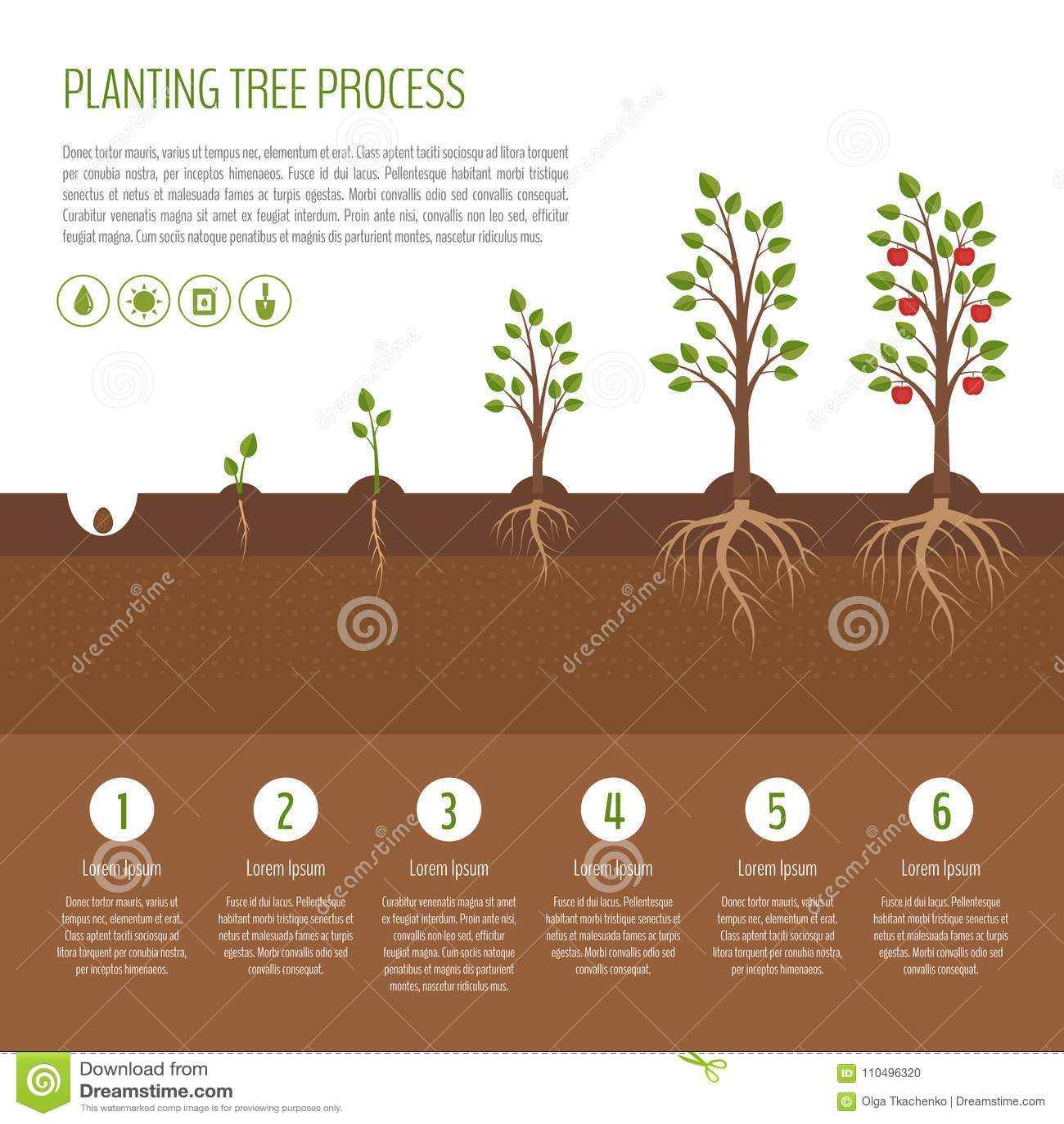 wann apfelbaum pflanzen