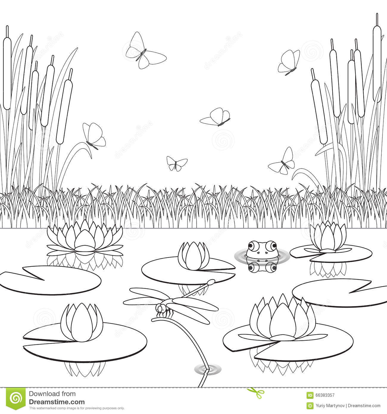 Bald cypress coloring pages ~ Cypress Swamp Pages Coloring Pages