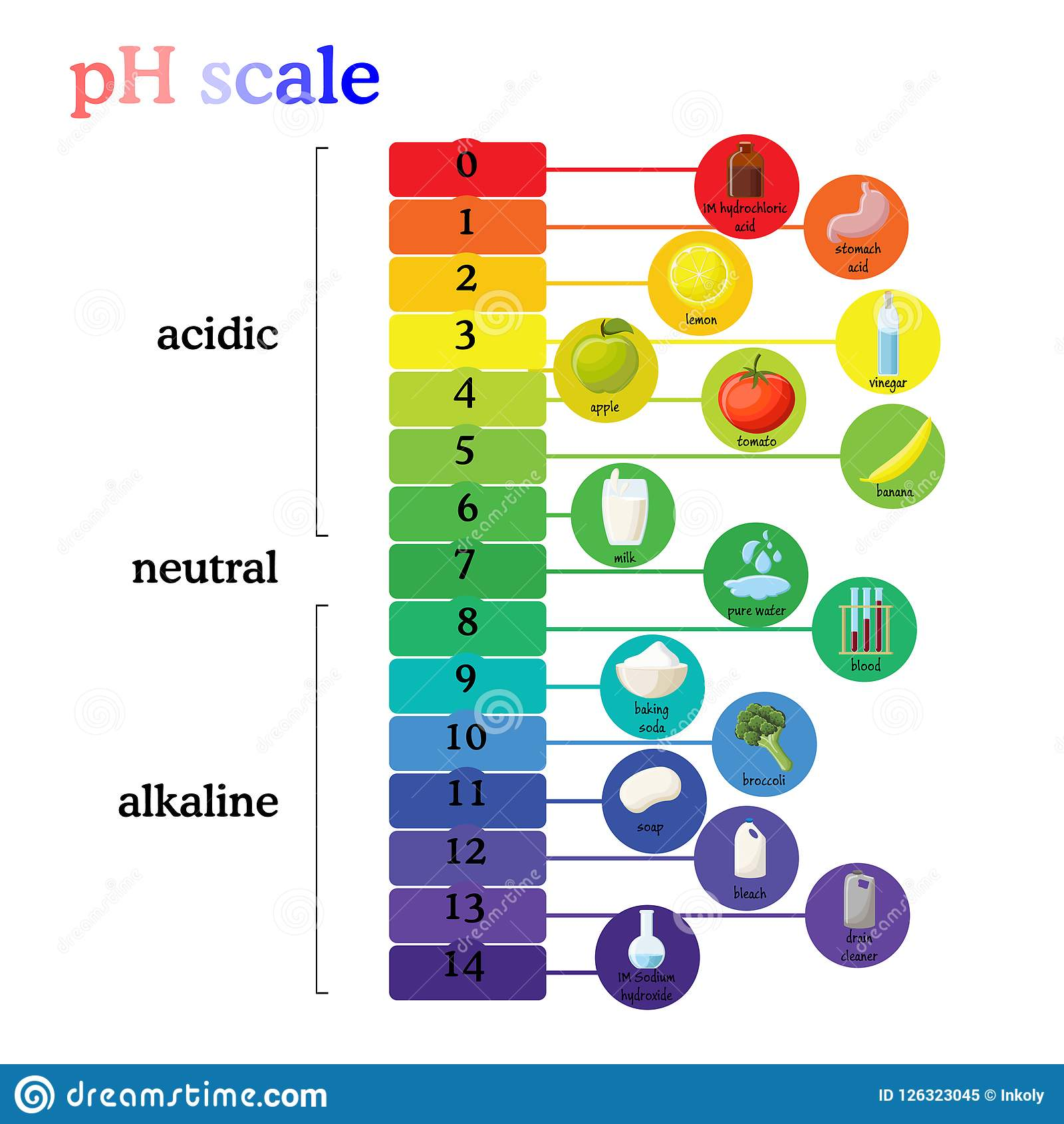 Ph Scale Diagram With Corresponding Acidic Or Alkaline