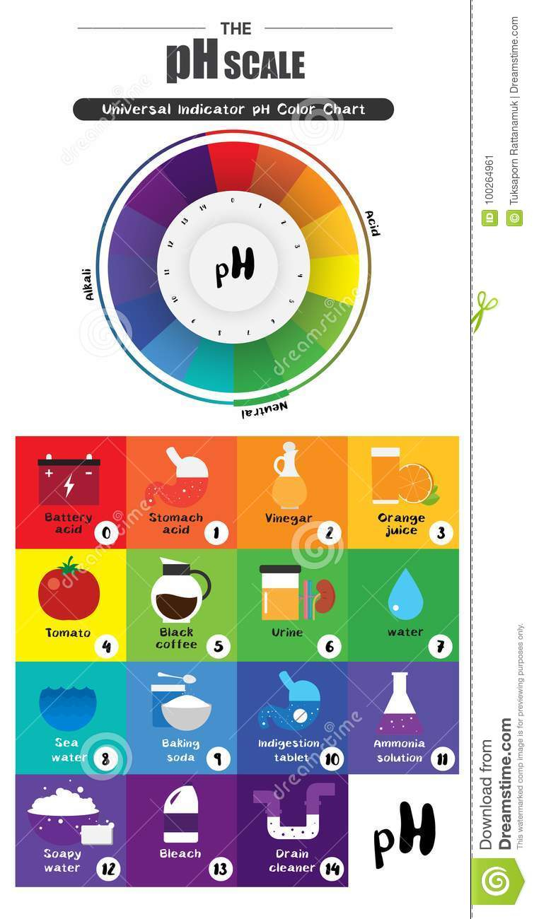 The ph scale universal indicator ph color chart diagram stock the ph scale universal indicator ph color chart diagram nvjuhfo Choice Image