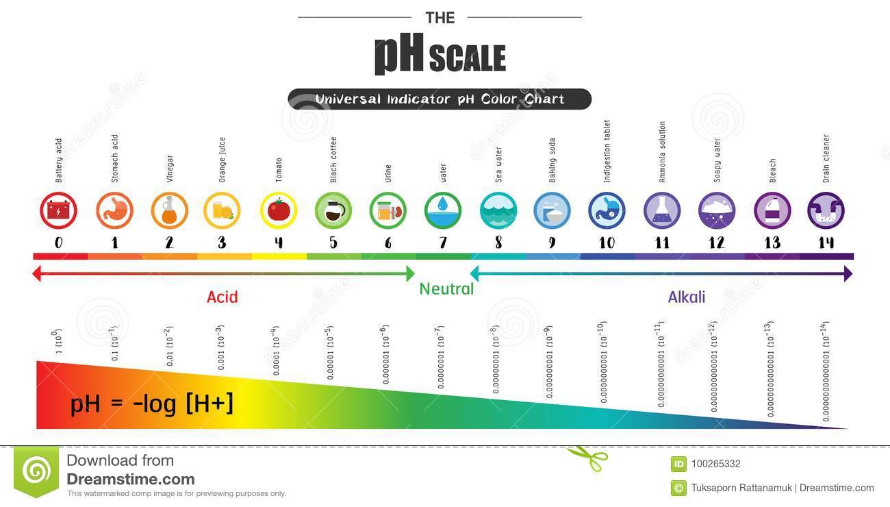 The PH Scale Universal Indicator PH Color Chart Diagram Stock ... for Ph Scale Universal Indicator  303mzq