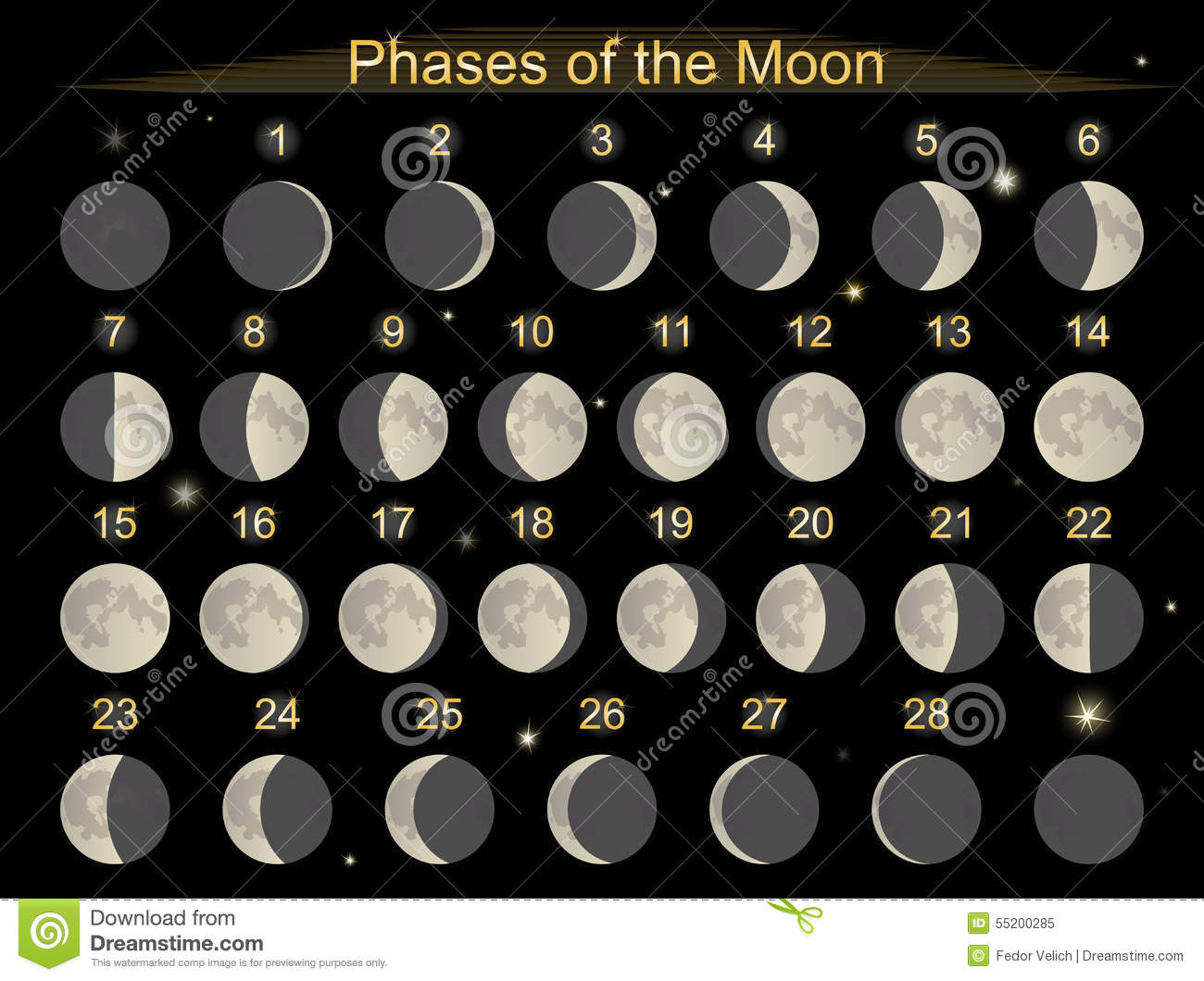 Moon Calendar Illustration : Phases of the moon stock vector image