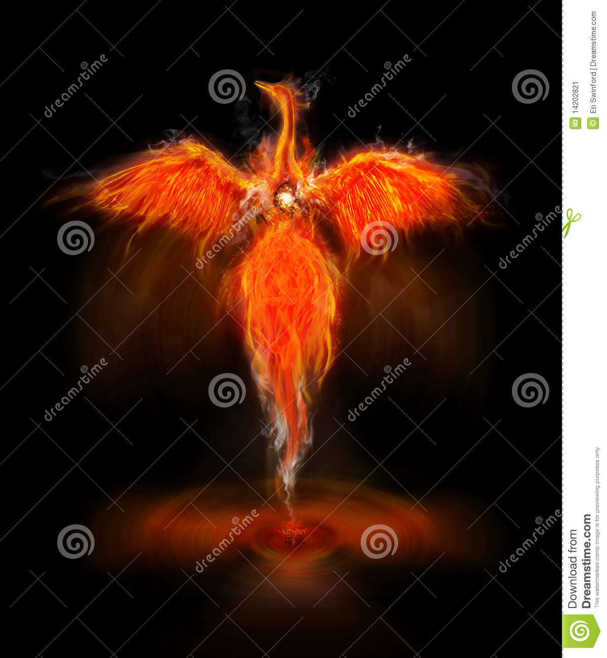 fiery phoenix bird with wings out stretched rising from a spiral ...