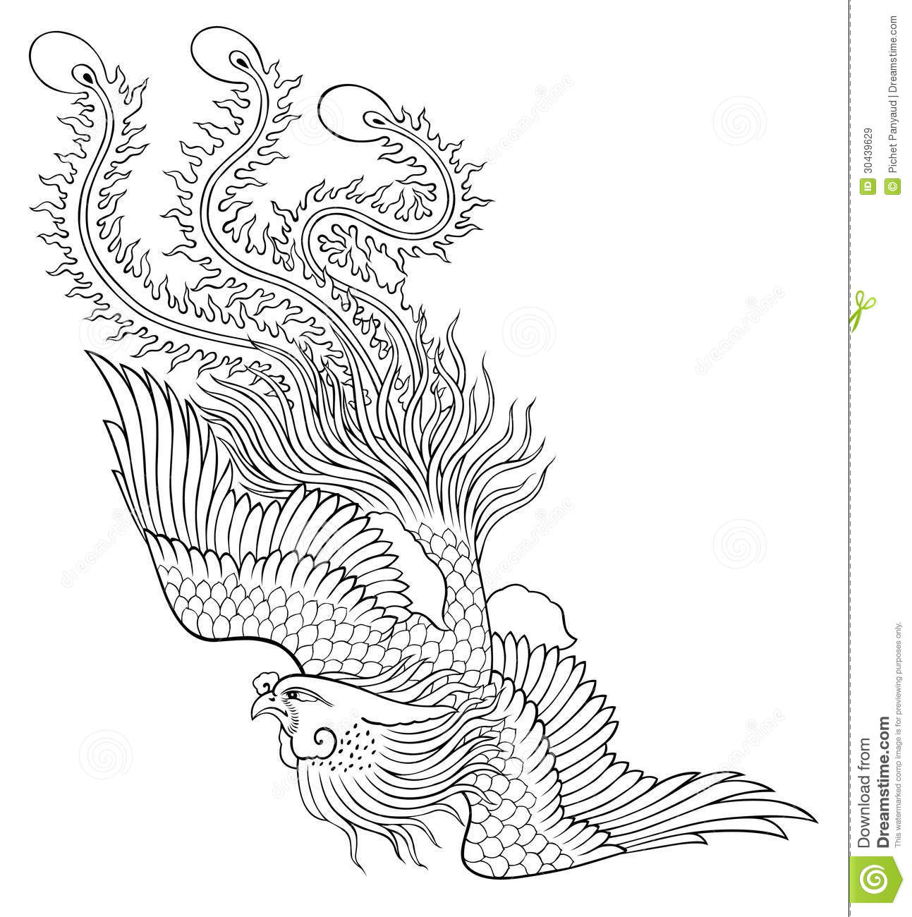 Phoenix chinese style royalty free stock images image for Background coloring pages