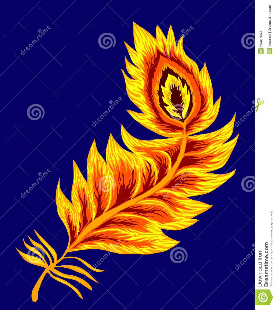 phoenix feather royalty free stock photos