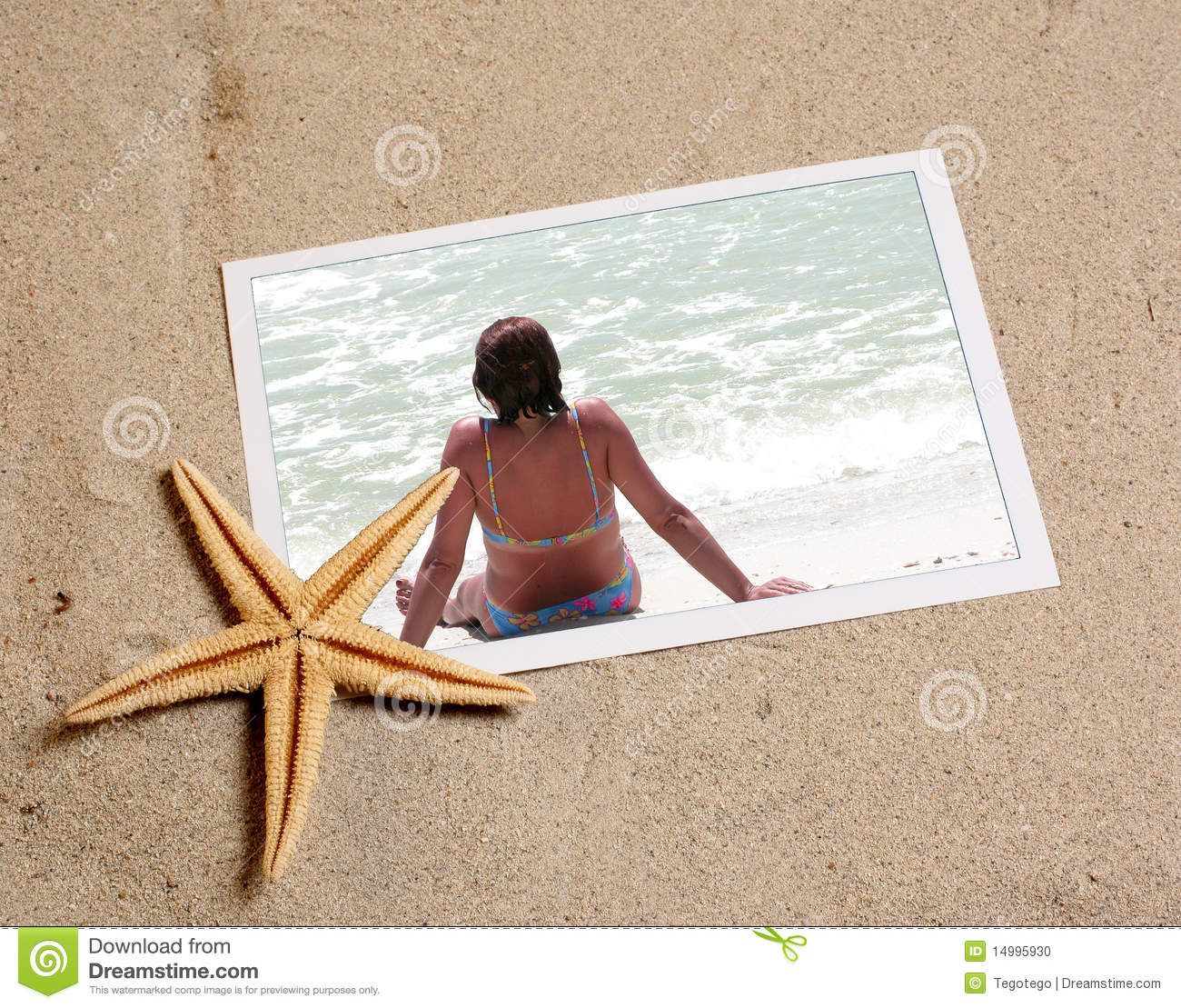 Photo in beach sand with starfish