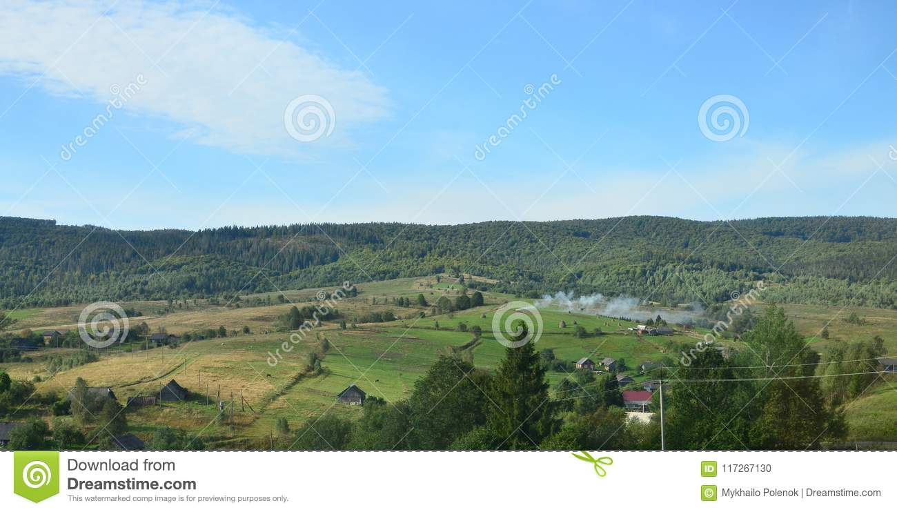 Photo of the Carpathian Mountains, which have a lot of coniferous trees. Forest and mountain landscape in the early autumn season
