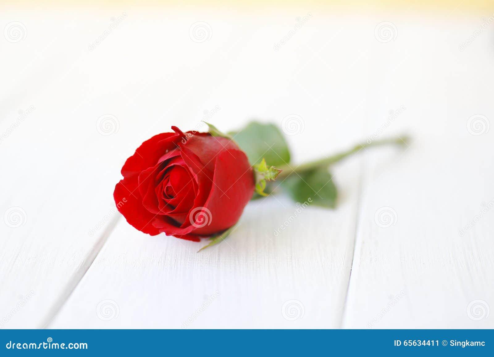 Photo courante : Belles roses rouges sur le plan rapproché de table