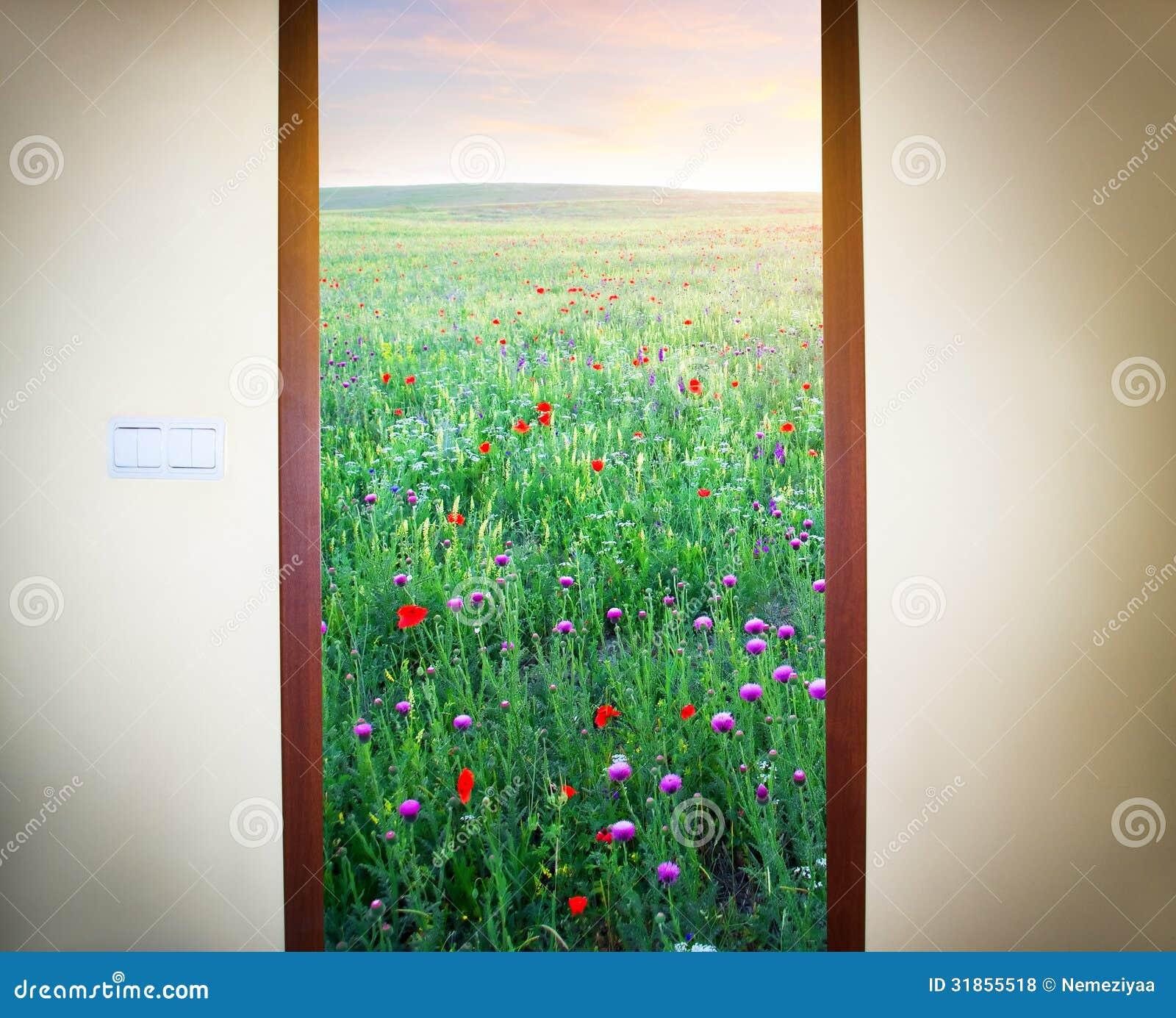 photo d 39 une porte ouverte photos libres de droits image 31855518. Black Bedroom Furniture Sets. Home Design Ideas