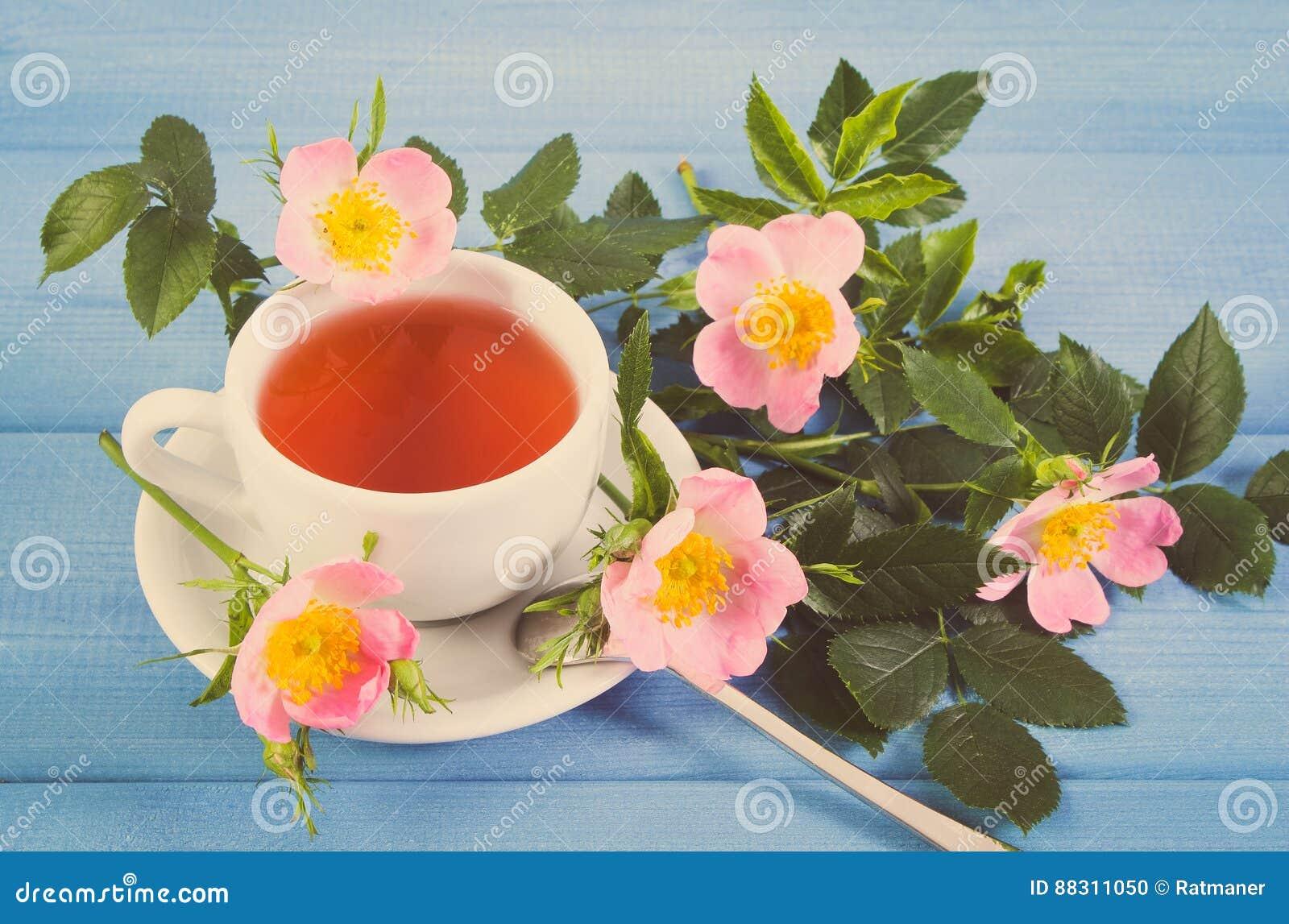 La photo de vintage, tasse de thé chaud avec la rose sauvage et la  floraison fleurit sur les conseils bleus ffa7e531a2f