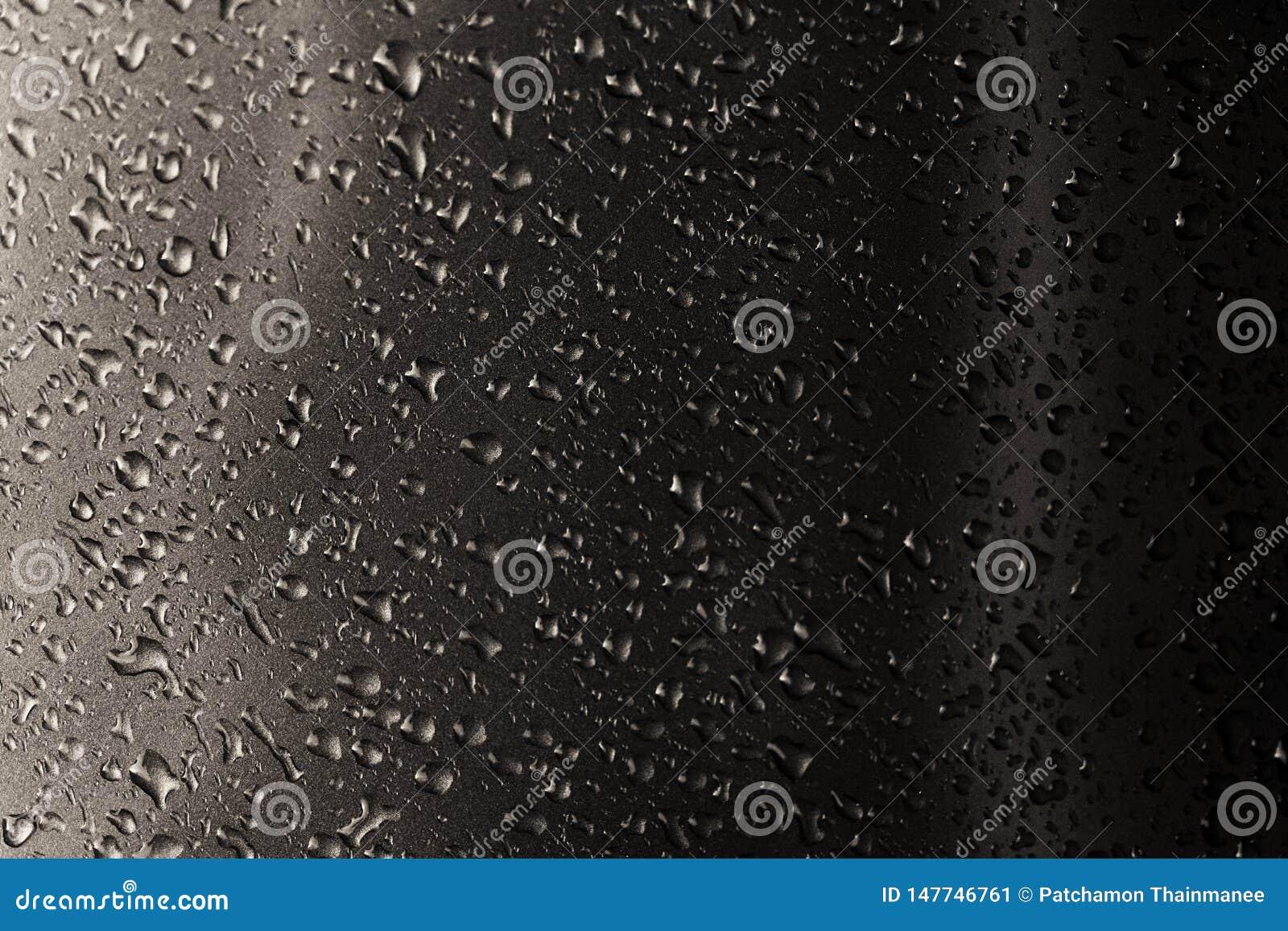 Photo en gros plan, gouttes de pluie, gouttes de pluie, images noires et blanches, r?sum?, milieux, textures, espace vide de copi