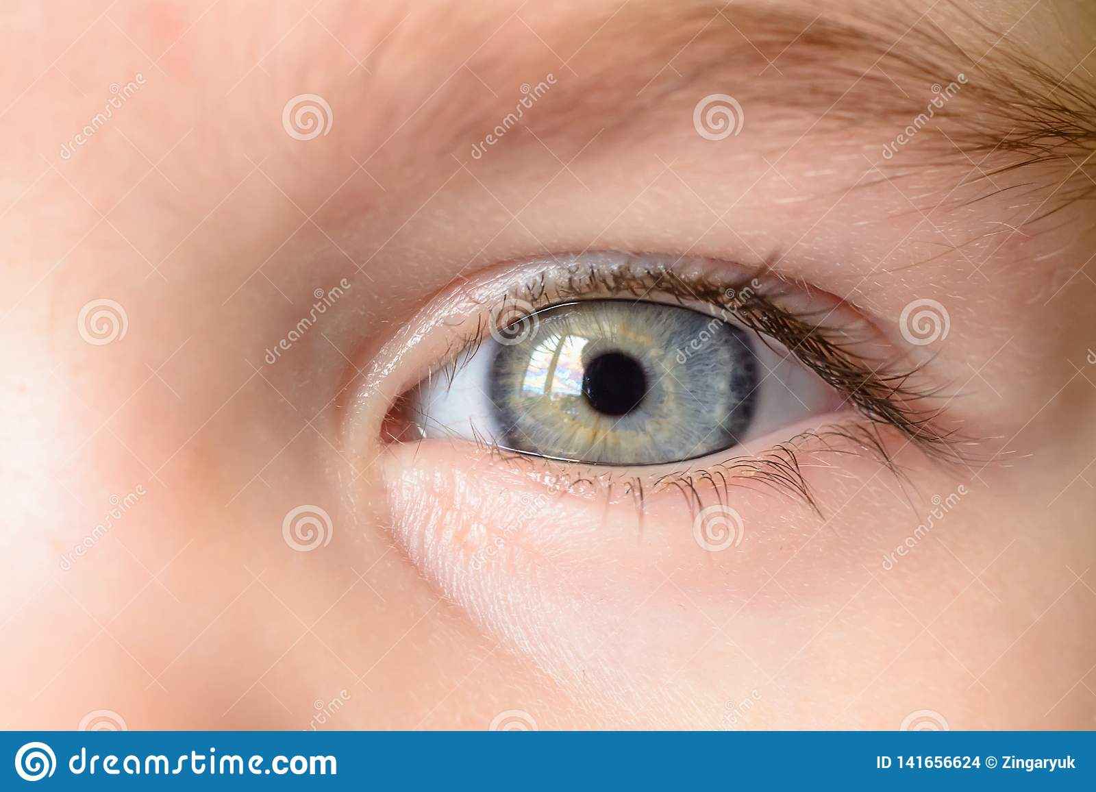 A photo of a gray eye and an eyebrow of a little girl close-up