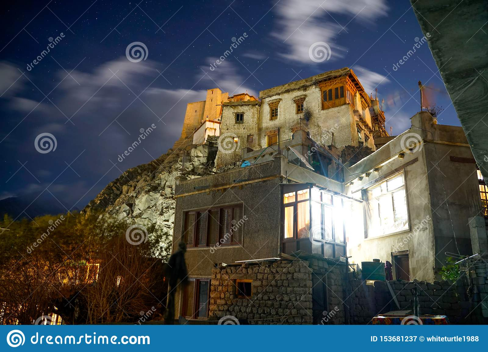 The photo of Leh Palace at night time