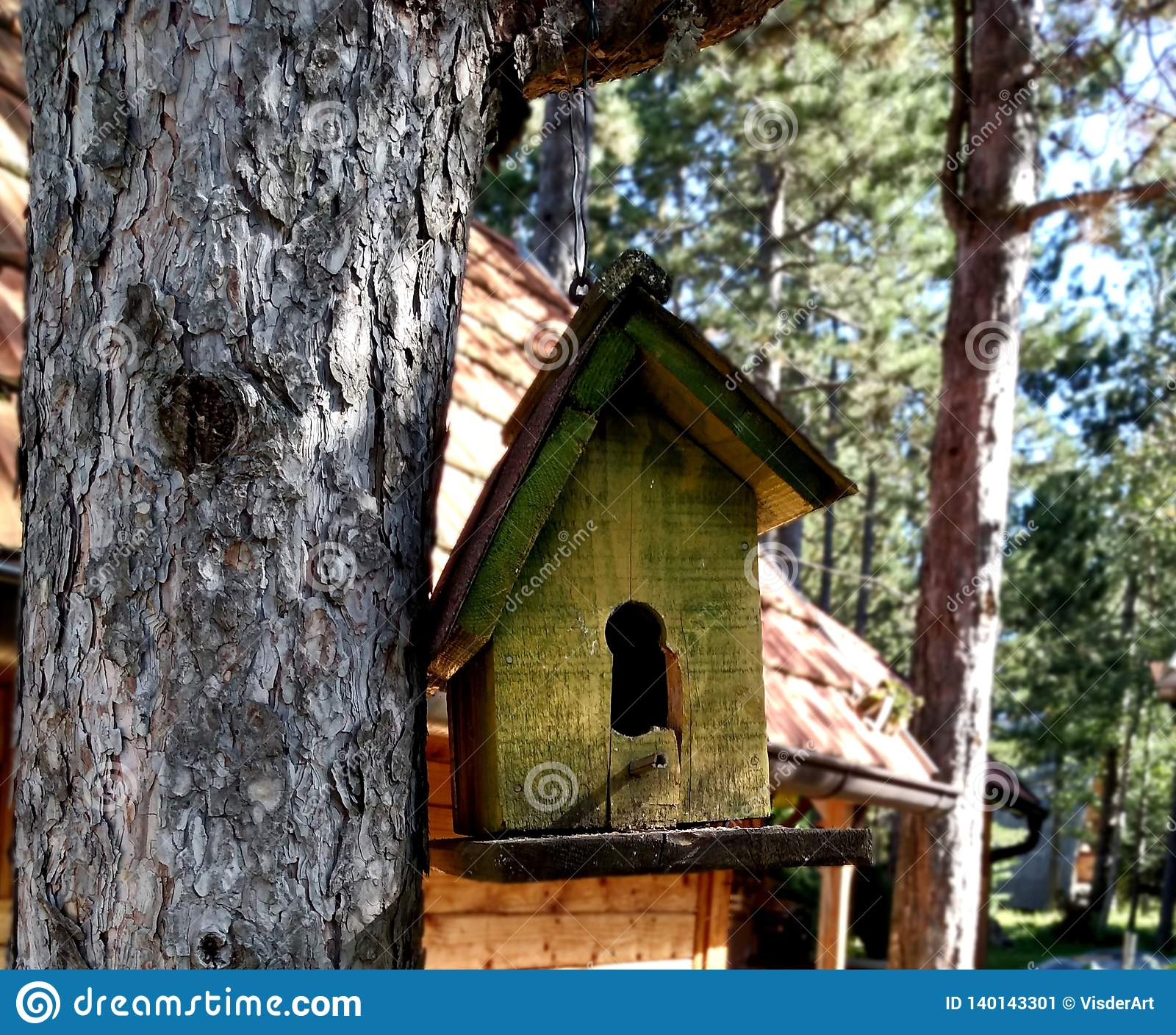 Small bird house by the cottage in the wood