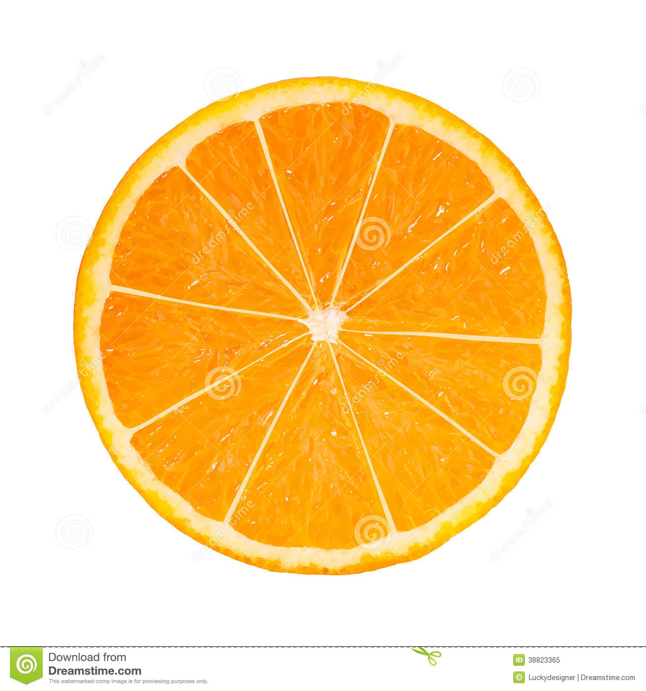 Photo-realistic Orange Slice Stock Vector - Image: 38823365