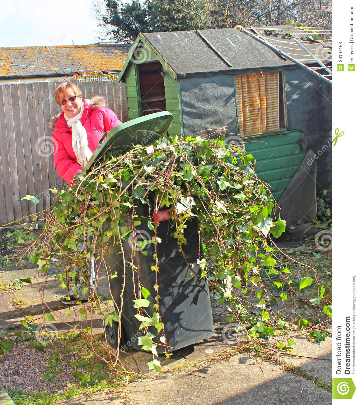 Garden Clearance Stock Image. Image Of Tendrils, Weed