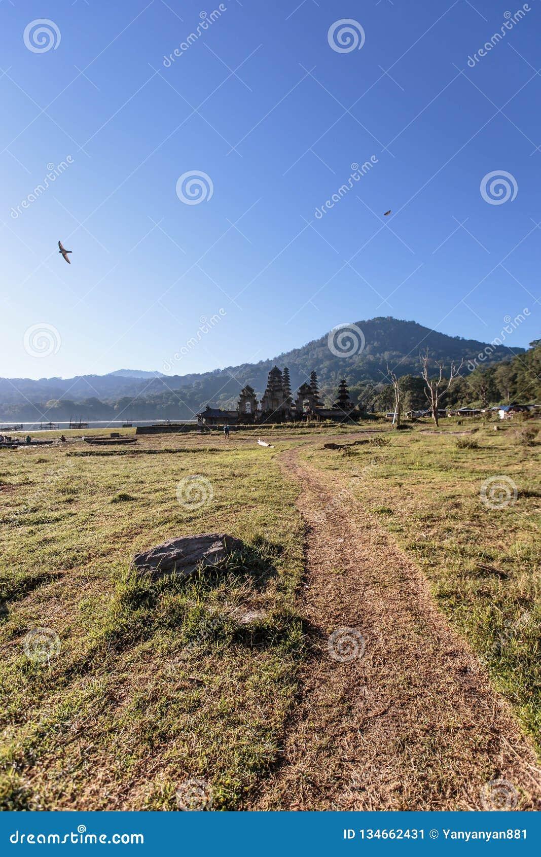 Peaceful background image of birds flying around natural landscape