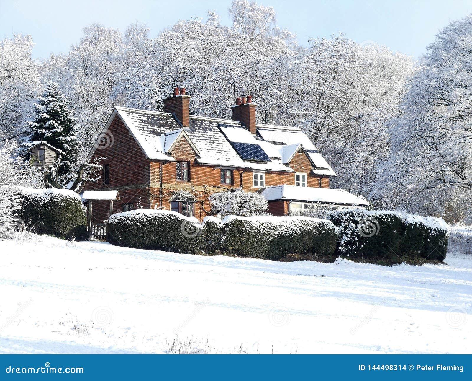 Cherry Tree Dell, Chorleywood Common, Chorleywood in winter snow