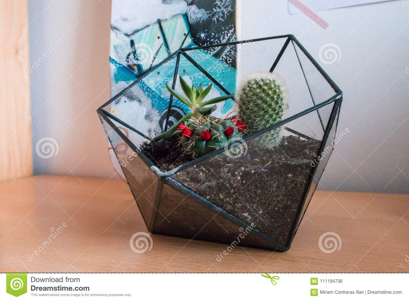 Photograph Of Terrarium With Cactus And Succulents Stock Photo