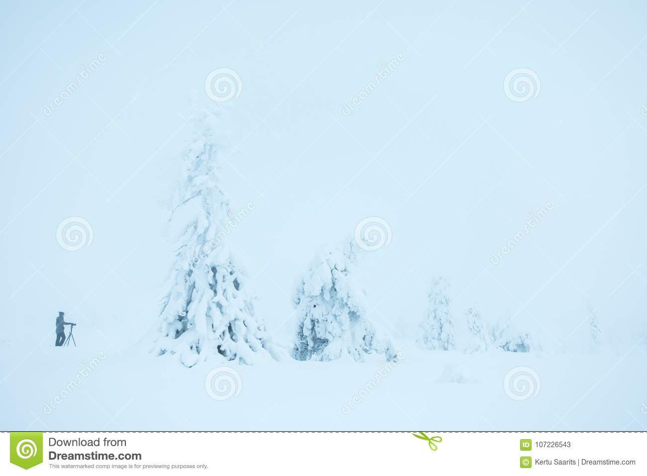 A photographer capturing the white arctic forest.