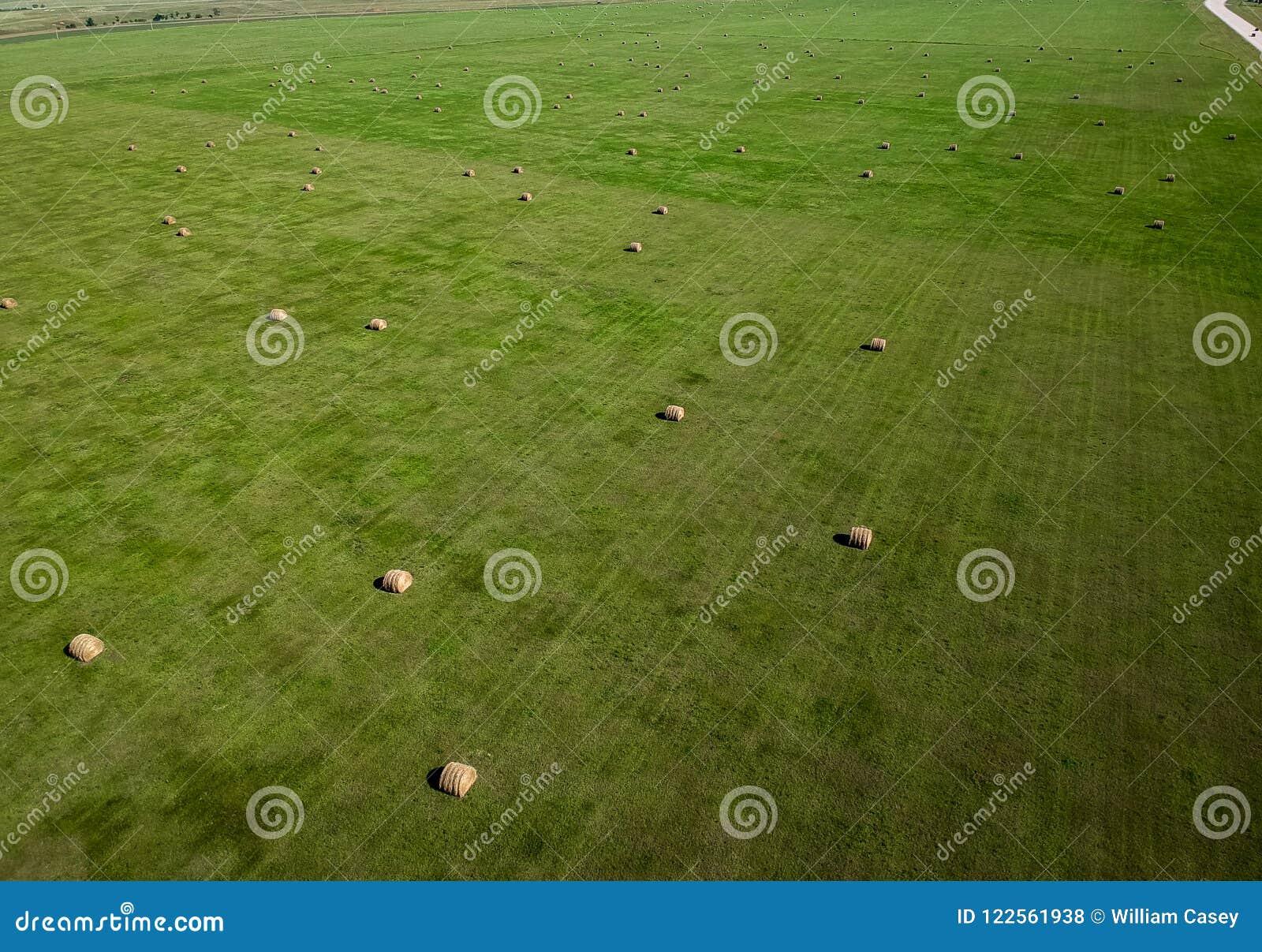 Photographie aérienne de gisement de balle de foin dans l agriculture du Dakota du Sud
