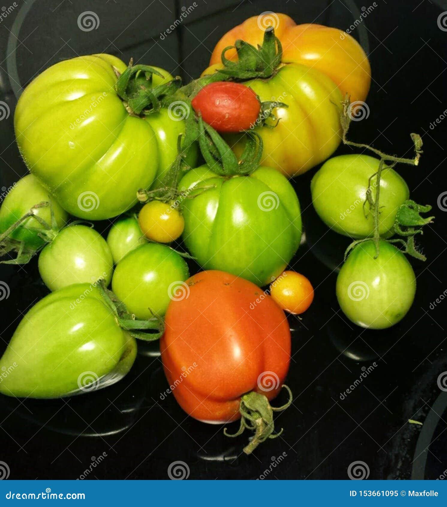 Photographs of popular ingredients in Italian cuisine