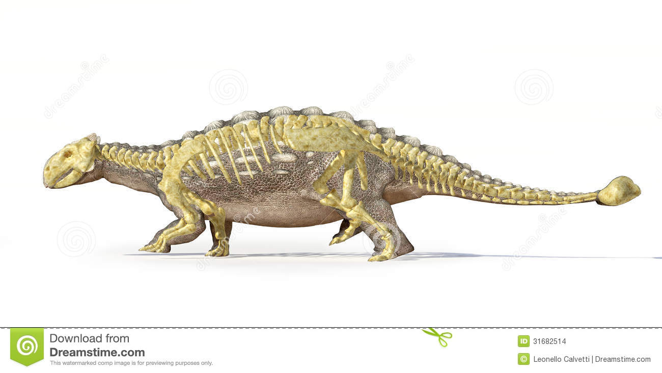 Photorealistic 3D rendering of an Ankylosaurus, with full skeleton ...
