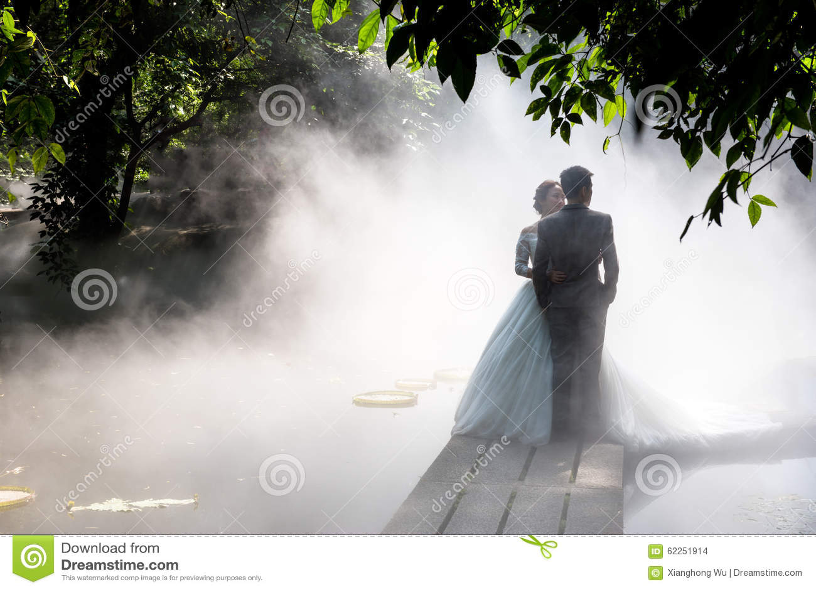 Photos de mariage en brouillard
