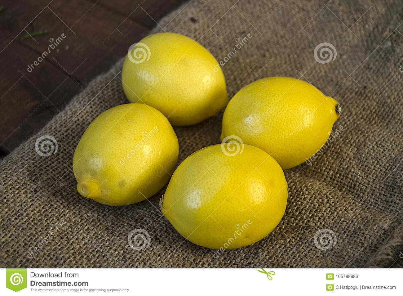 Great Looking Lemon Paintings For Salads And Sauces In The ...