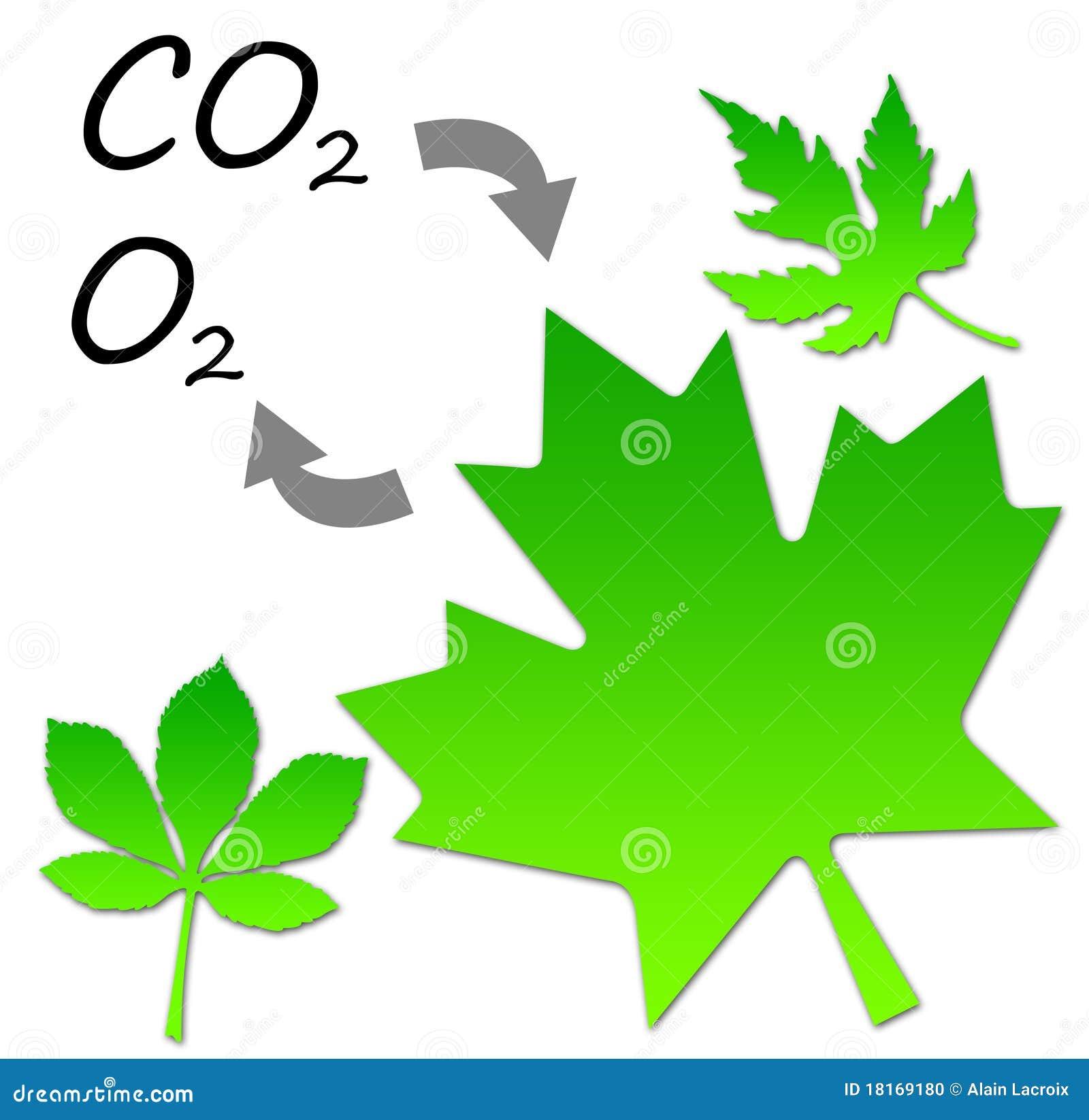 Carbon Dioxide Plants Clipart