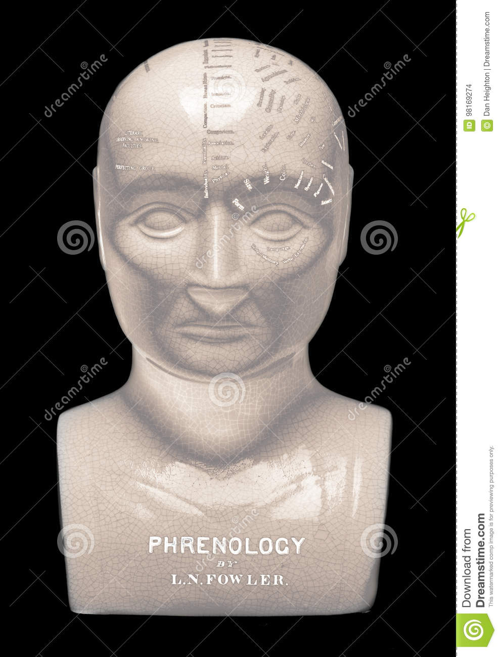 phrenology head on black background editorial stock image image of