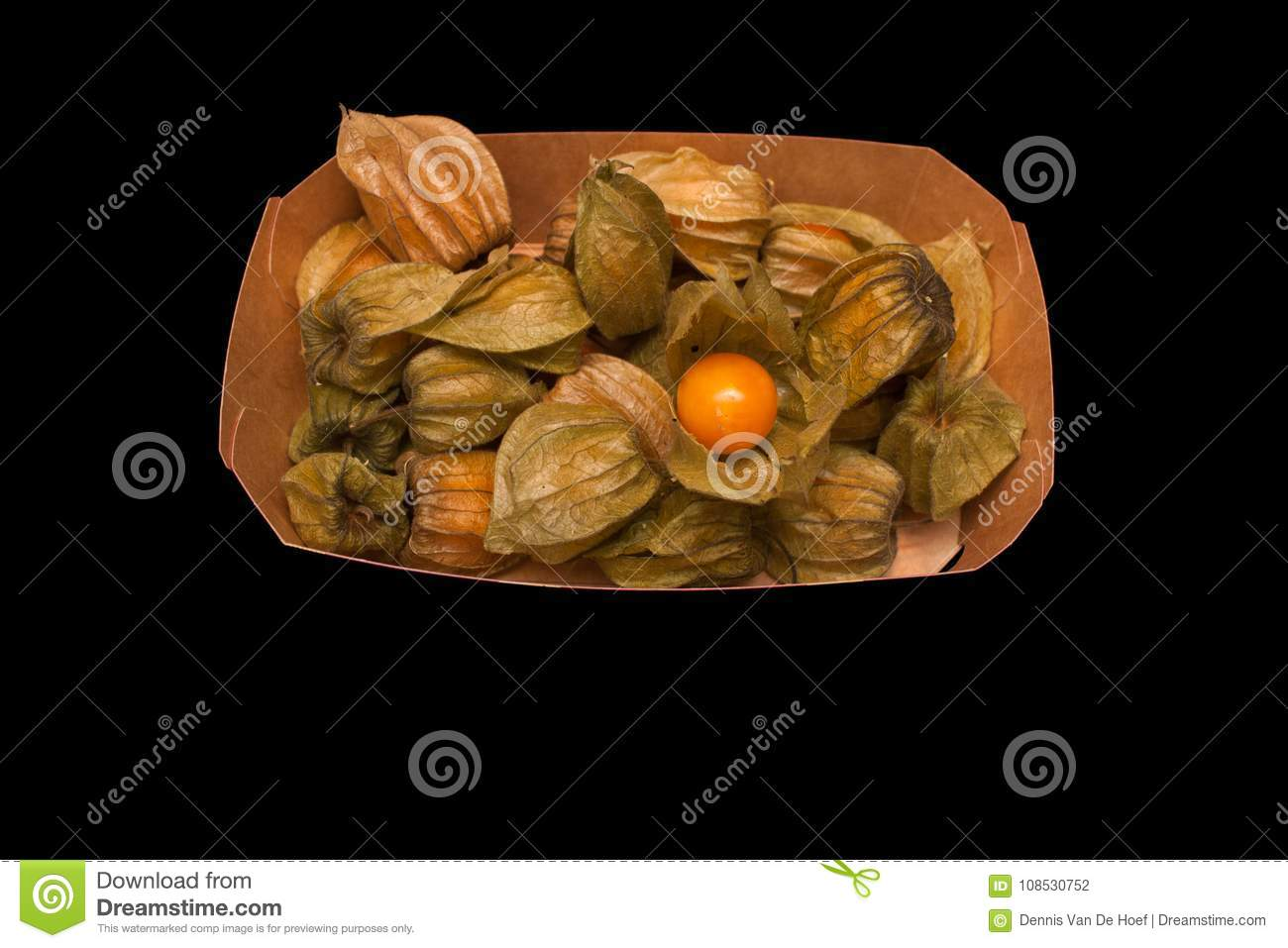 Physalis peruviana Cape gooseberry, goldenberry isolated on.