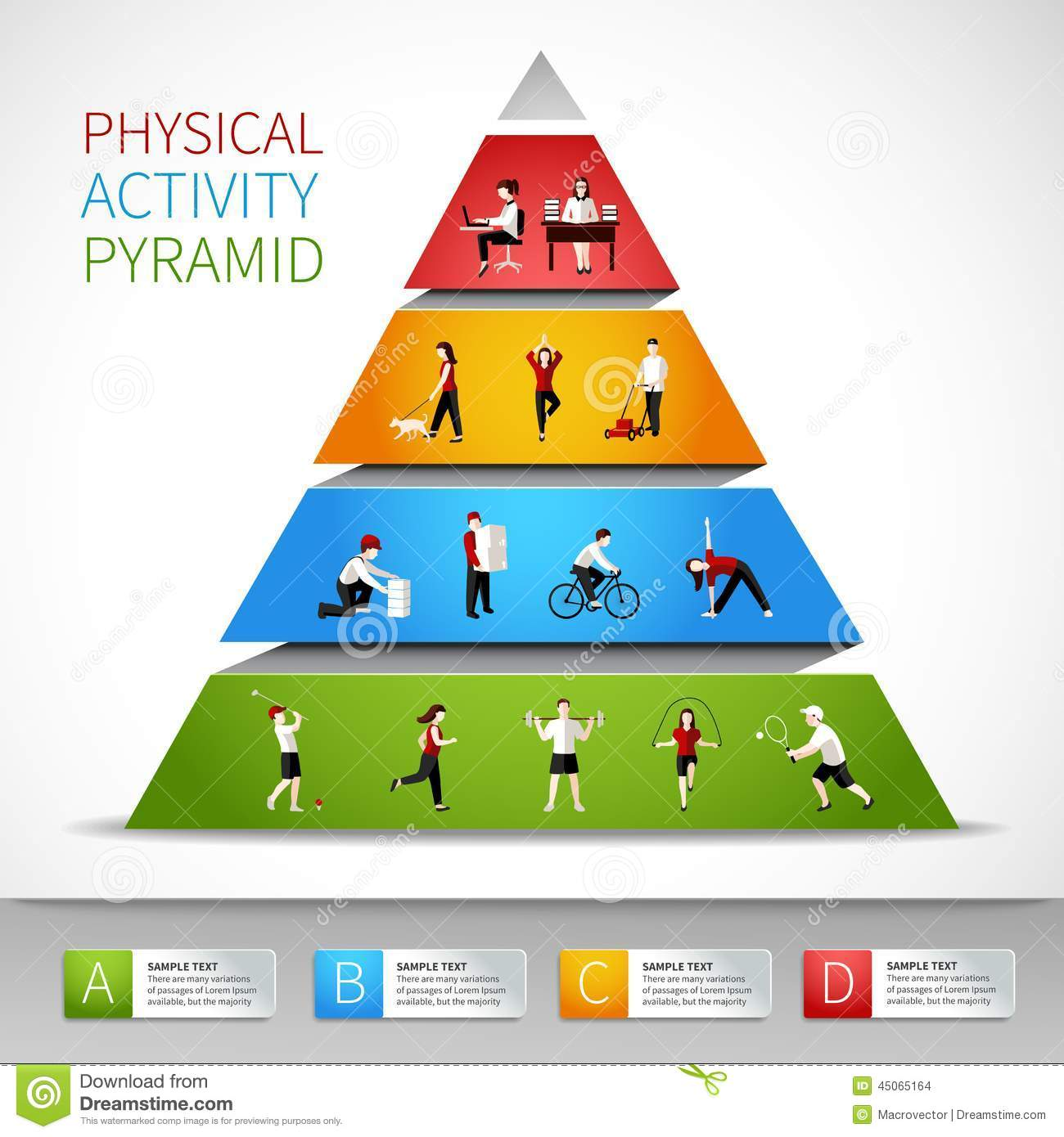 Physical Activity Pyramid Infographic Stock Vector - Image: 45065164