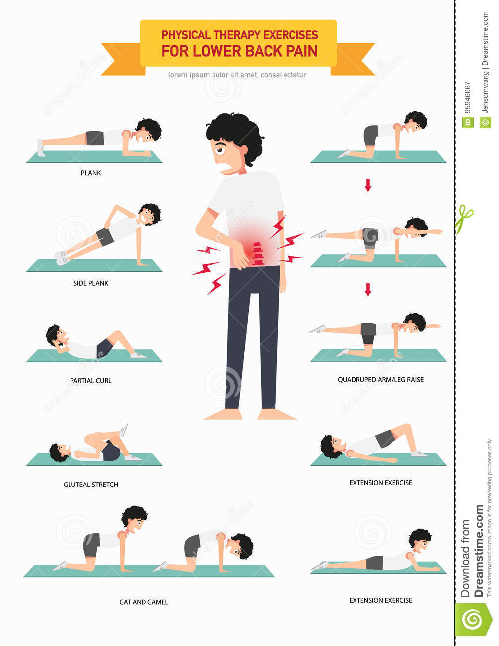 Exercise for physical therapy - Back Exercises Illustration Infographic Lower Pain Physical Therapy