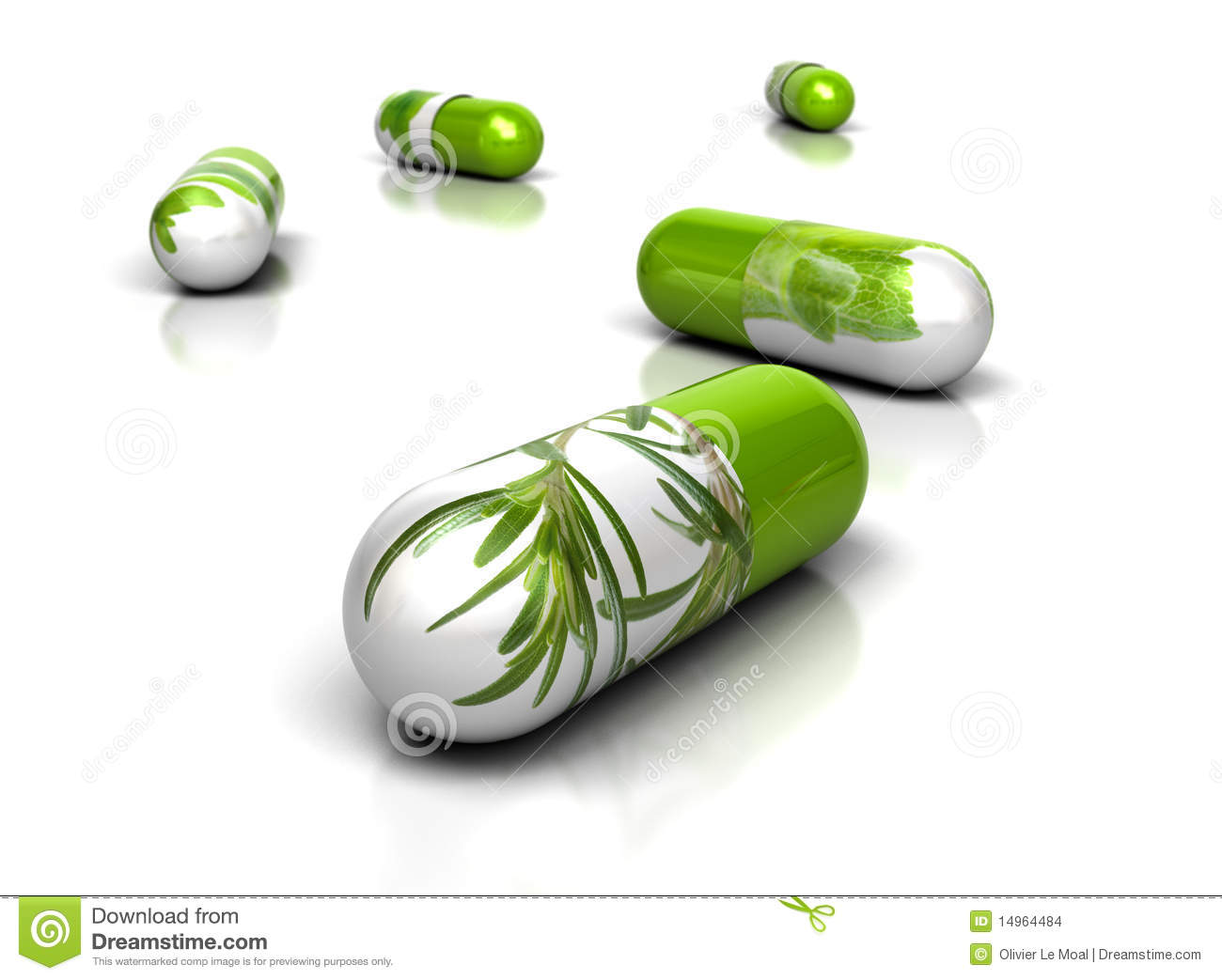 Phytotherapy and Phytopharmacology