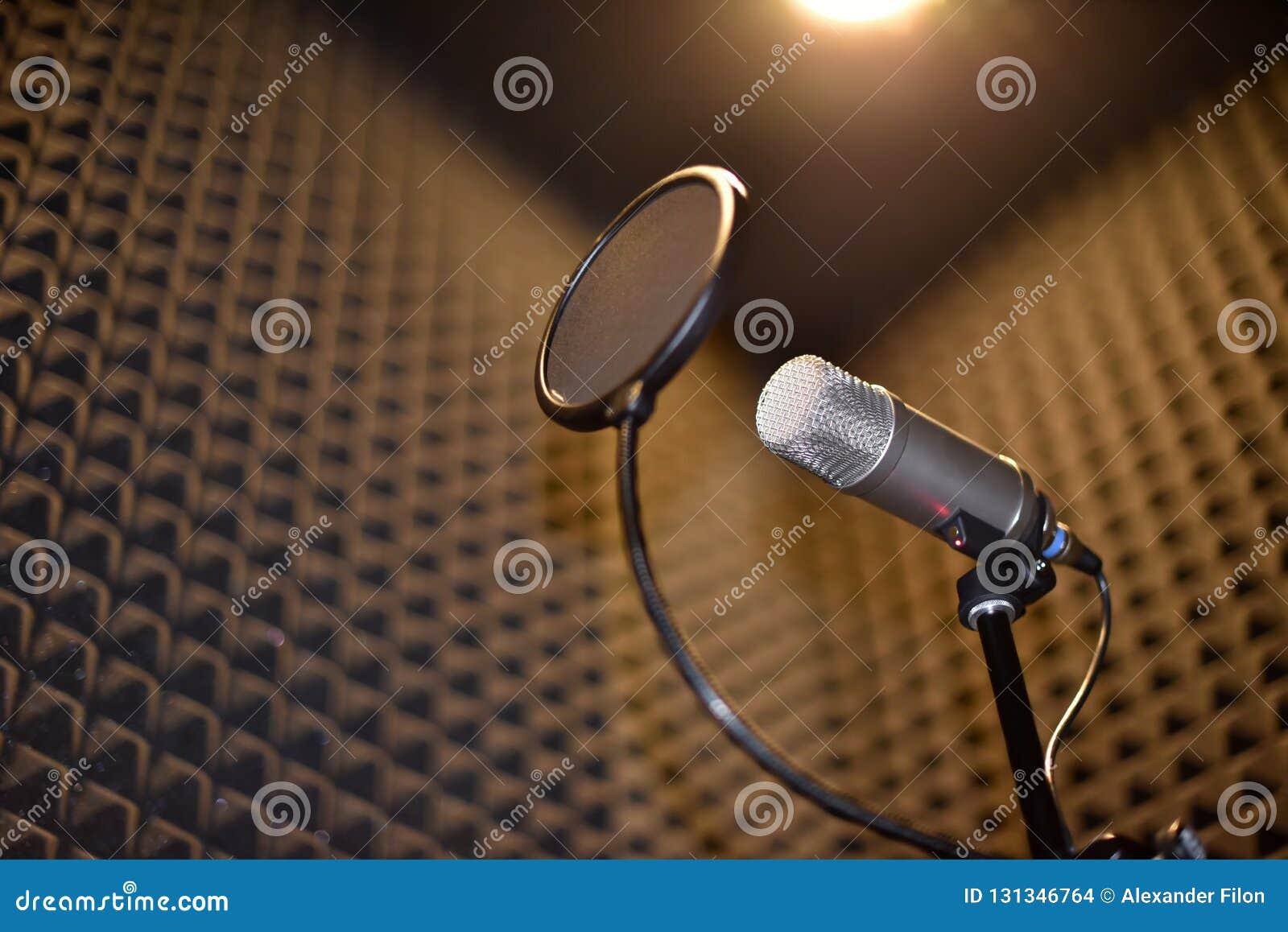 Pièce d enregistrement sonore avec l isolation de bruit