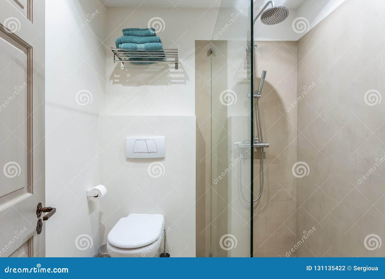 Pièce De Douche Moderne De Salle De Bains Avec La Toilette ...