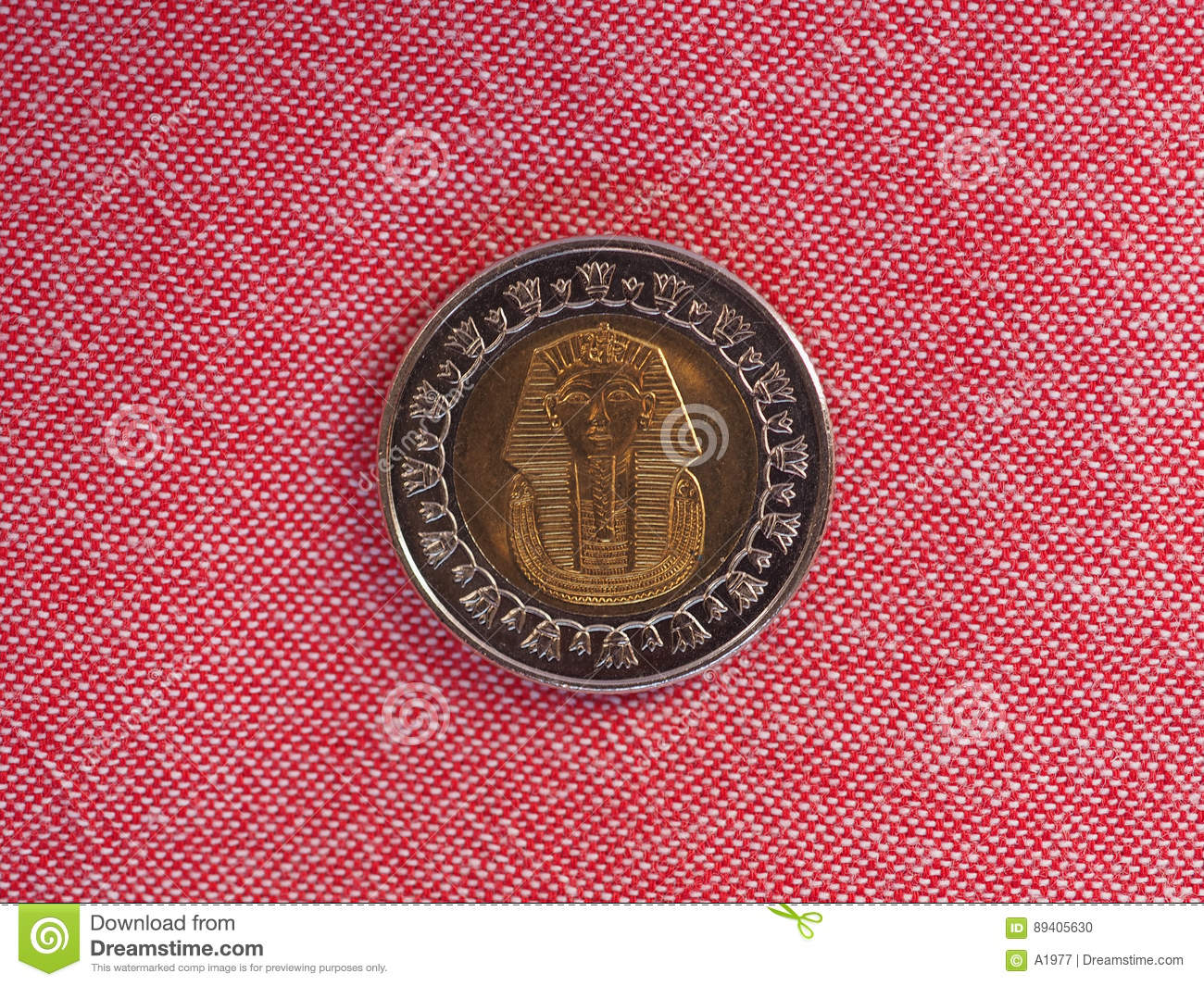 Piece De Monnaie De Livre Egyptienne Photo Stock Image Du