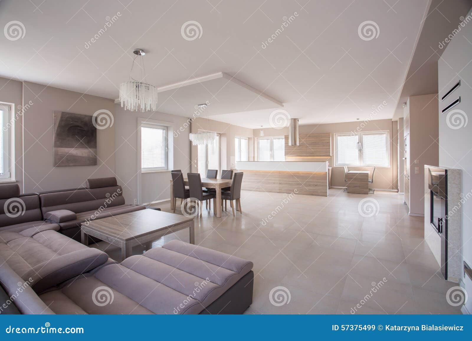Pièce spacieuse avec le sofa de suède
