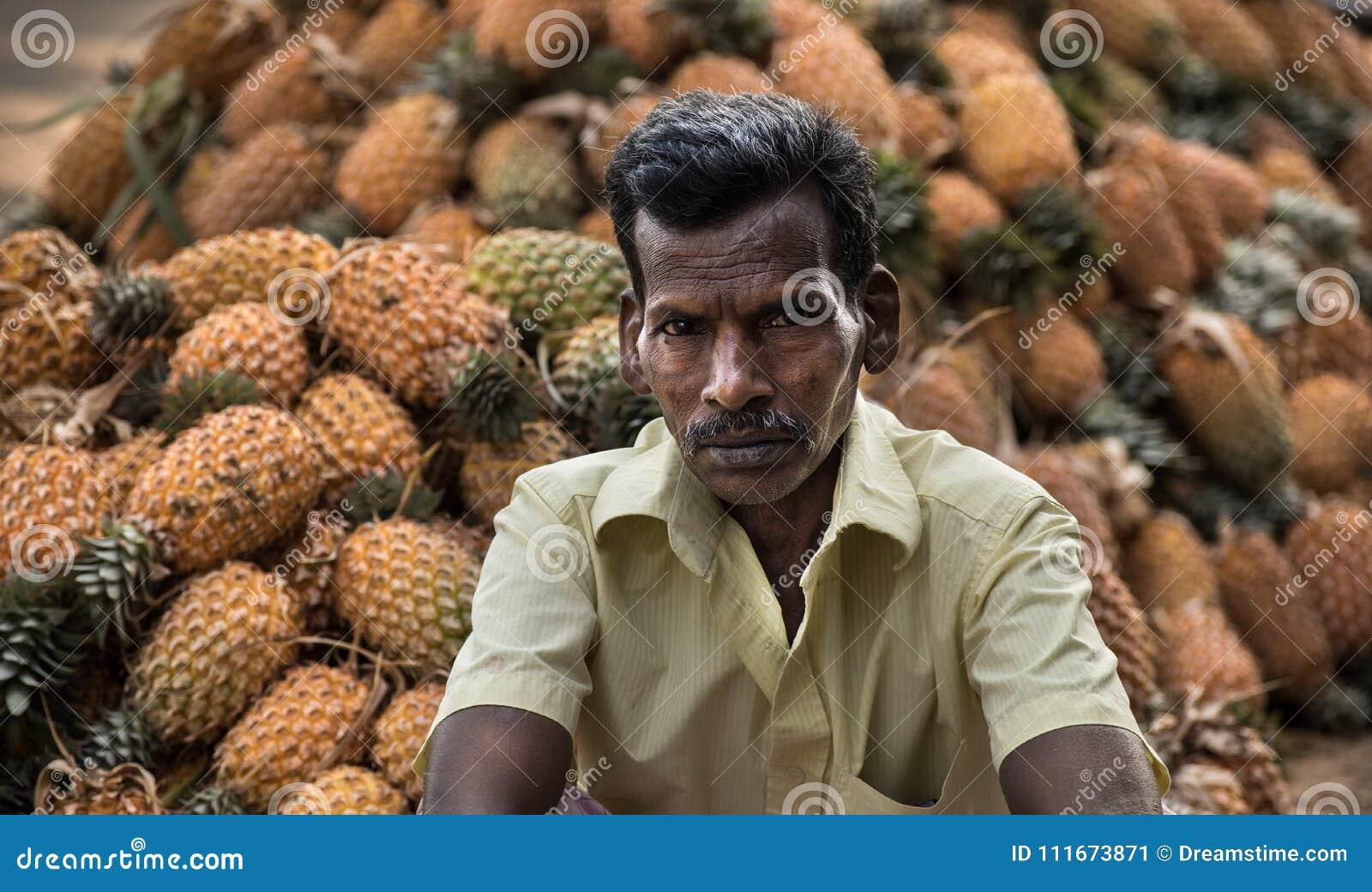 Piña que cosecha en Kerala