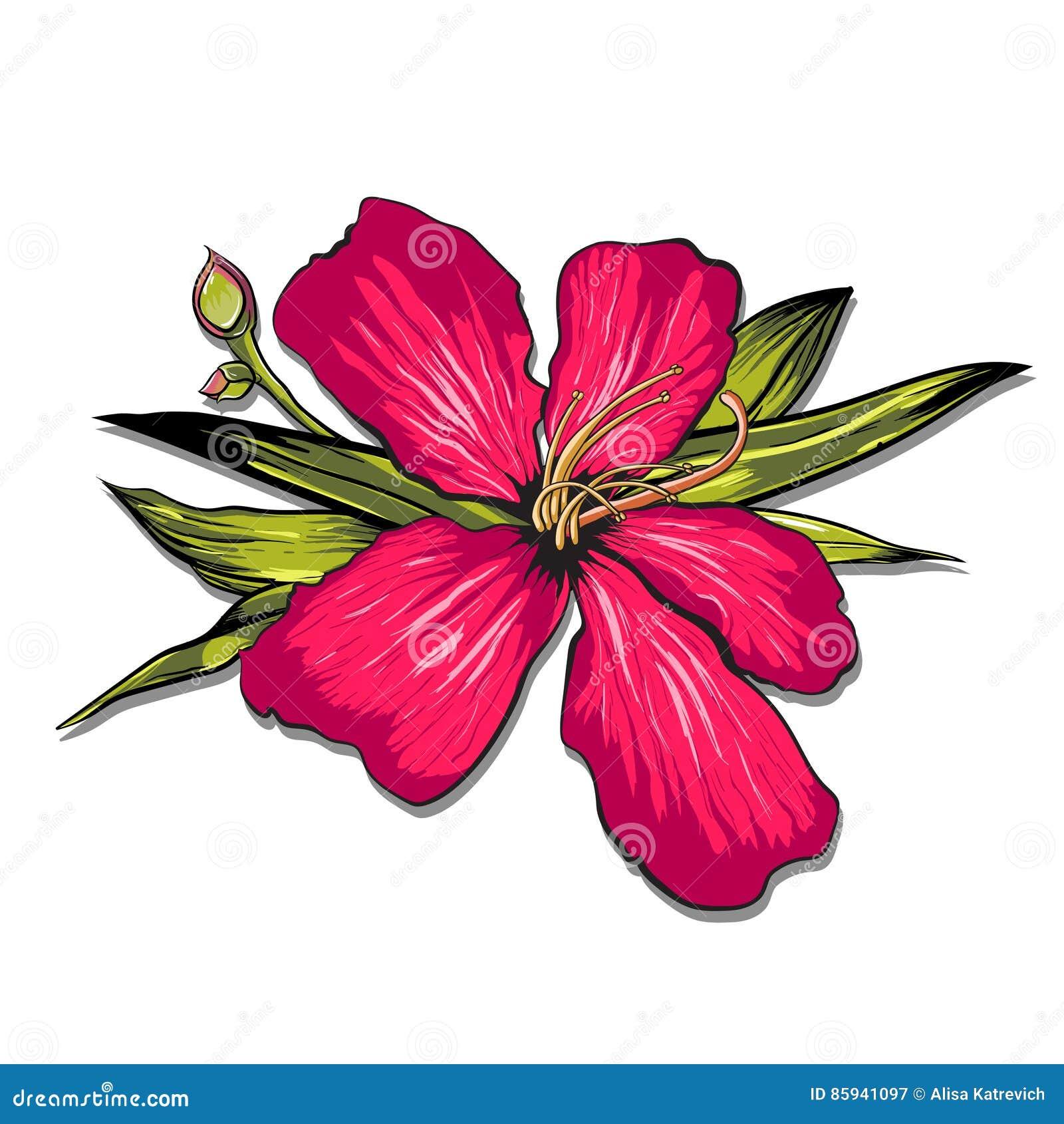 Piñas y fondo tropical de la geometría de las flores - modelo inconsútil del vintage - en vector