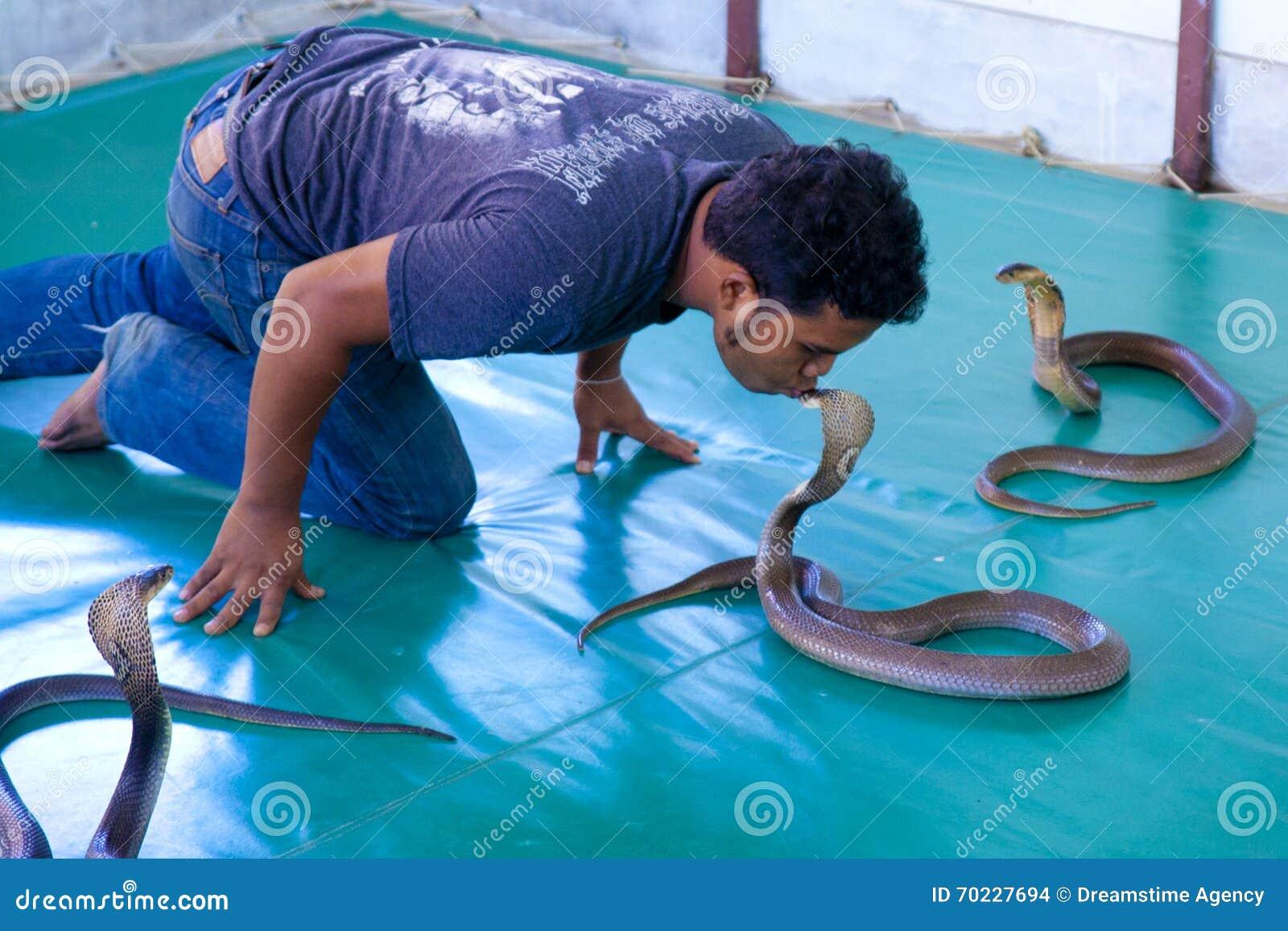 Più addomesticato dei serpenti Vedimi lavorare